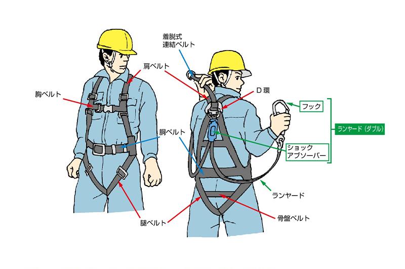 フルハーネス型安全帯の基本的構造/ 厚生労働省