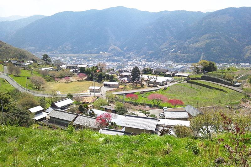 【石積みのある風景】~徳島県三好市池田町西山~